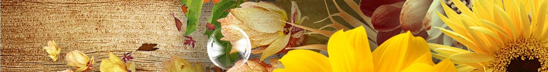 Flores de otoño e invierno
