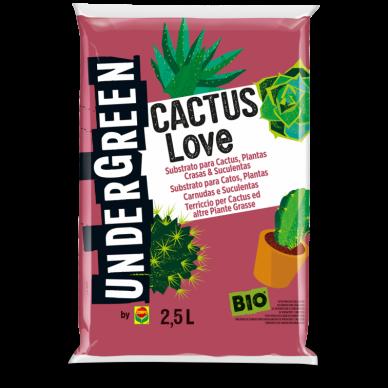 CACTUS LOVE SUBSTRATO PARA CACTUS, PLANTAS CRASAS & SUCULENTAS 2,5L