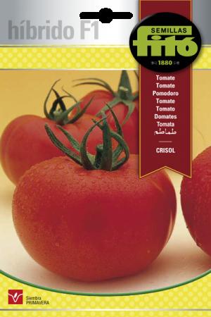 Híbridos de Tomate Crisol