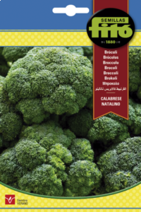 Bróculi Calabrese Natalino