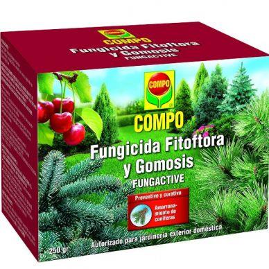 Fungicida Fitóftora y Gomosis Fungactive - Compo - 250g