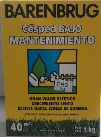 Césped BAJO MANTENIMIENTO