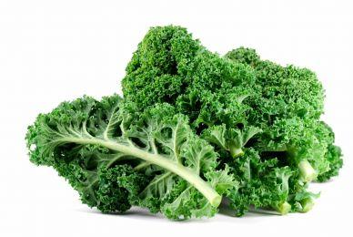 Planta de Col Crespa Kale x9