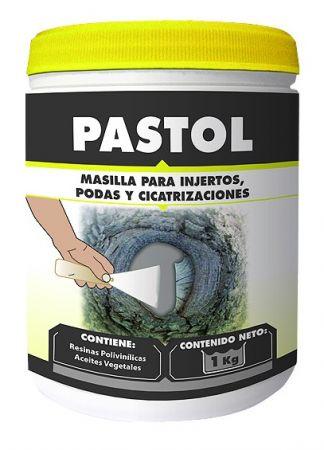 Masilla pasta Pastol - Massó