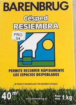 Césped Resiembra PRO 54