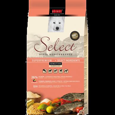 Select Adult Sensitive Salmon & Rice
